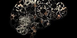 Qué son las funciones cognitivas básicas y superiores