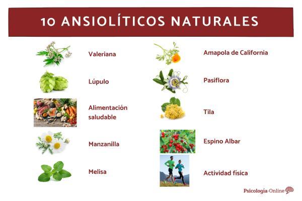 Ansiolíticos naturales para calmar la ansiedad - Los mejores ansiolíticos naturales