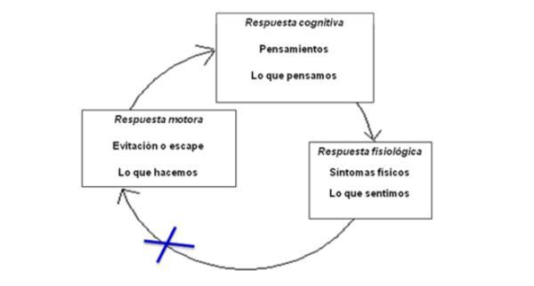 Ansiedad como respuesta psicofisiológica