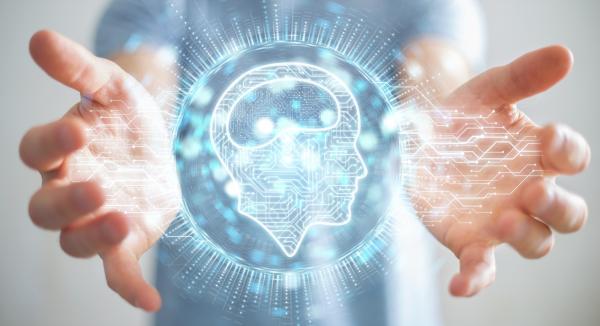 Cómo funciona la mente humana