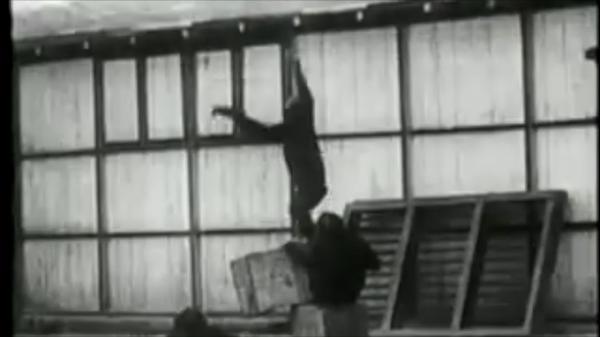 Experimentos psicológicos interesantes - Kohler y el experimento de los chimpancés
