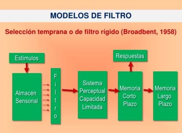 Modelo de Filtro Rígido y Atenuado - Modelo de Filtro Rígido de Broadbent