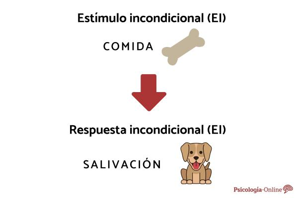 Estímulo incondicionado: qué es y ejemplos