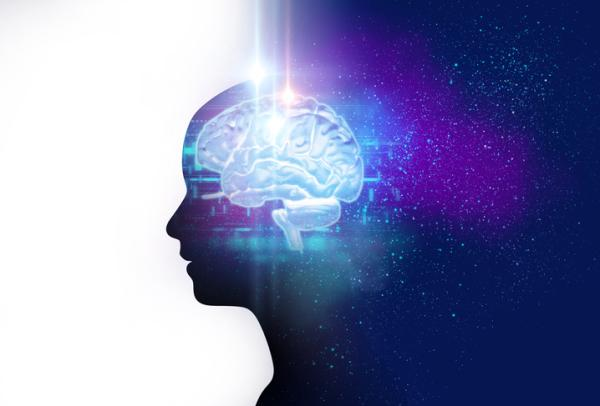 15 tipos de inteligencia