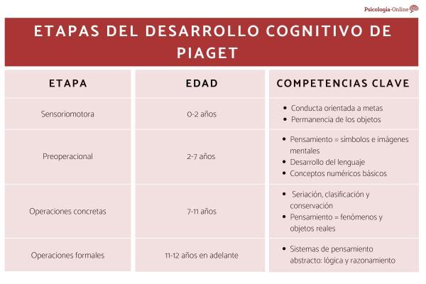 La teoría del desarrollo cognitivo de Piaget - Las etapas del desarrollo cognitivo de Piaget