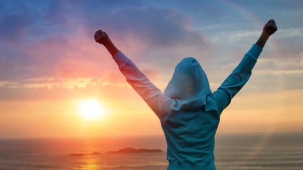 Efectividad y satisfacción laboral - Efectividad y satisfacción