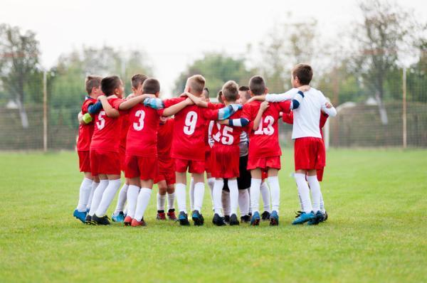 La Psicología del Deporte en el Fútbol Escolar y Juvenil - La cuestión psicológica en los futuros deportistas