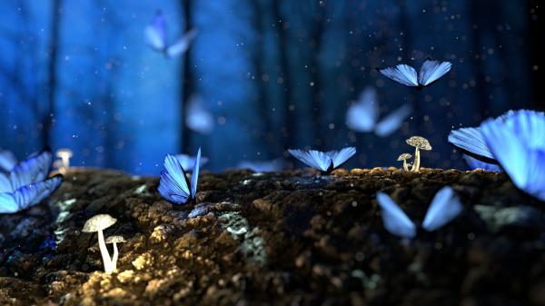 Qué significa el efecto mariposa en psicología - Efecto mariposa: ejemplos y frases