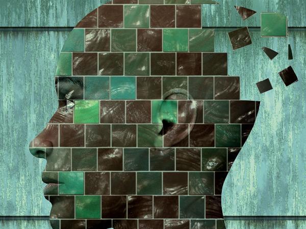Cuáles son los procesos cognitivos básicos - 1. Percepción