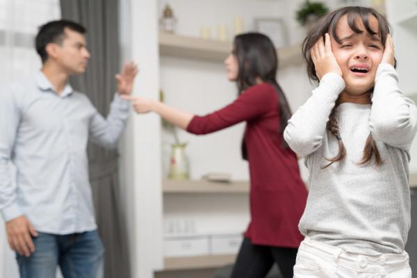Violencia doméstica: qué es, tipos, causas y consecuencias