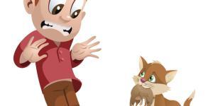 Ailurofobia o fobia a los gatos: significado, causas, síntomas y tratamiento
