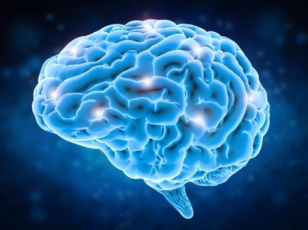 Efectos de la nicotina en el sistema nervioso - Efectos de la nicotina en el Sistema Nervioso