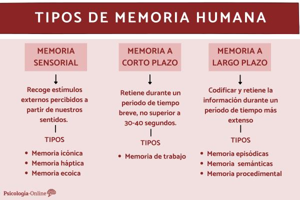 Tipos de memoria humana