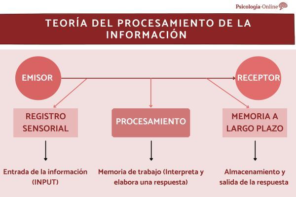 Teoría del procesamiento de la información: qué es, características y ejemplos