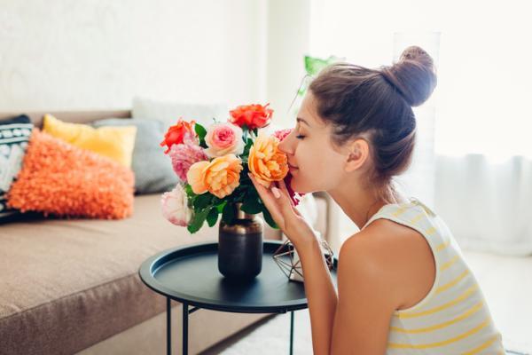 Cómo entrenar la mente - Olfatear diferentes olores