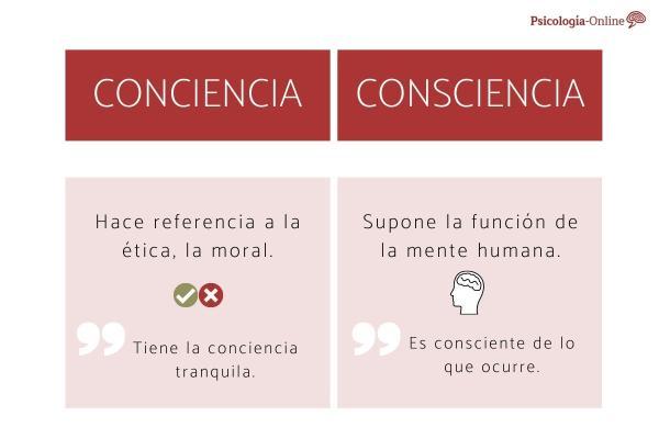 Conciencia o consciencia: significado, diferencia y ejemplos