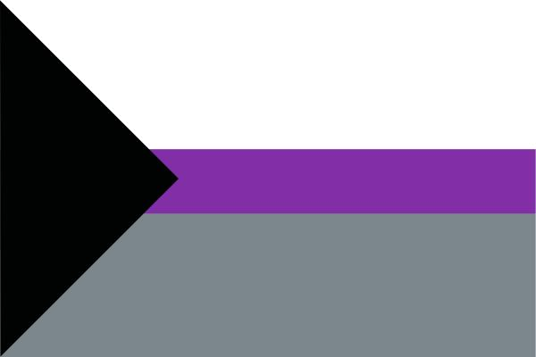 Qué es ser demisexual: características y bandera