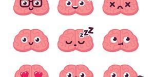 Sistema nervioso simpático y parasimpático: diferencias y funciones
