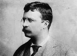 Teorías de Personalidad en Psicología: Alfred Adler - La historia de Theodore Roosevelt