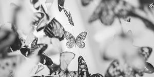 Los arquetipos de Carl Gustav Jung: lista con ejemplos