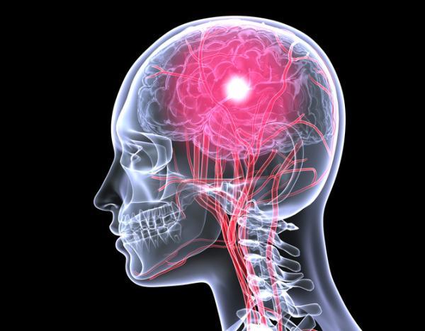 Psicología fisiológica: qué es, historia y fundamentos