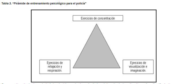 La Preparación Mental del Policia en las Intervenciones Policiales - Conclusiones
