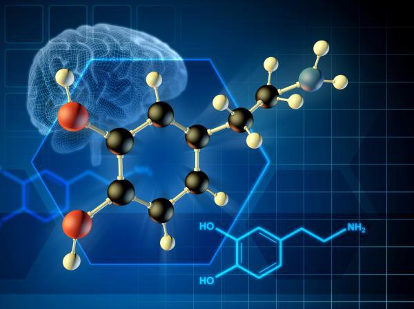 Cómo bajar el exceso de dopamina