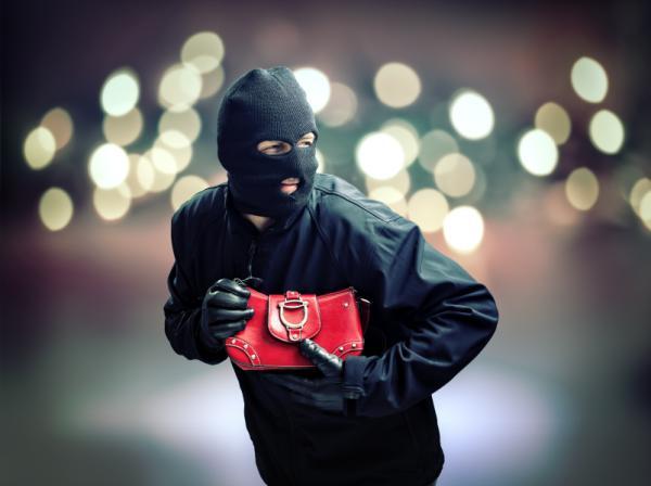 Perspectivas en el estudio de la delincuencia