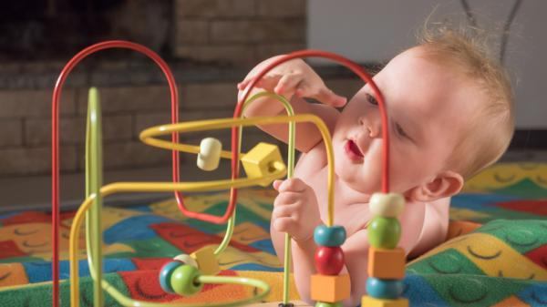 Desarrollo del sistema nervioso: etapas y factores - Desarrollo sistema nervioso del bebé y el niño