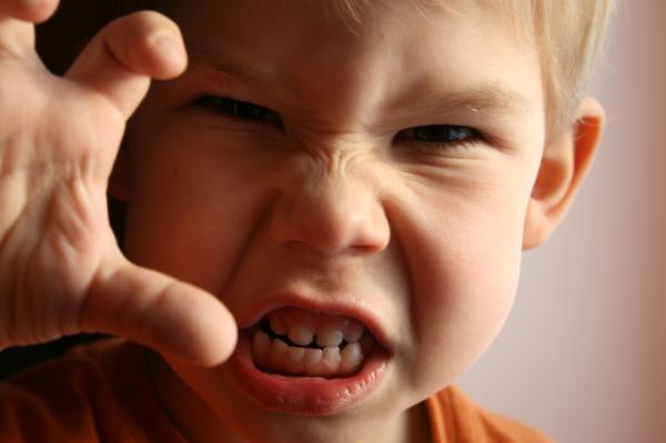 Conductas Agresivas en la Infancia