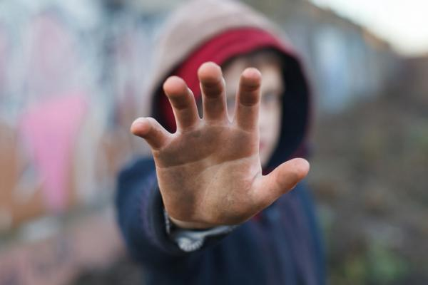 Conductas Agresivas en la Infancia - Etiología de la conducta agresiva: