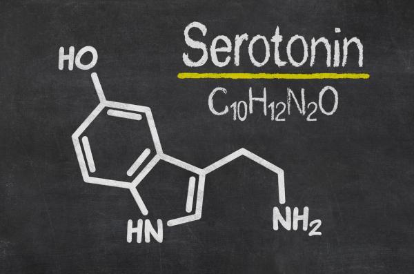 Sertralina: para qué sirve, efectos positivos y dosis - Qué efecto tiene la sertralina en el cerebro