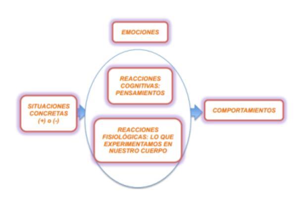 Sobre la inteligencia emocional - ¿Para qué nos sirven las emociones?