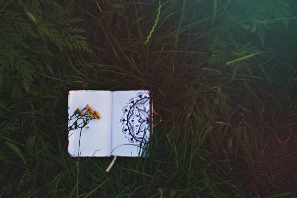 Qué son las mandalas y su origen - ¿Qué es un mandala?