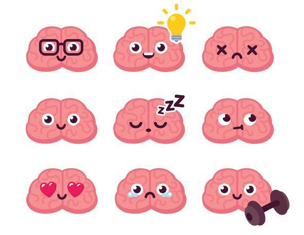 Teste de dominância cerebral de Herrmann - Teste dos hemisférios cerebrais ou lateralidade cerebral?