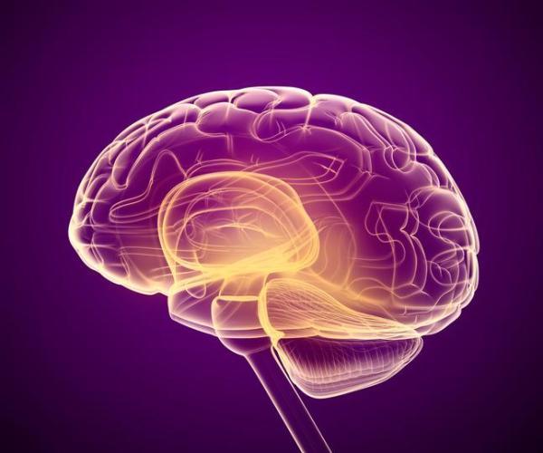 Síndrome de Asperger em adultos: sintomas e tratamento - O que é Síndrome de Asperger