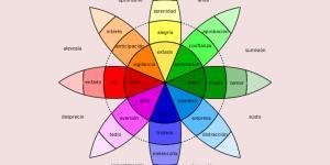 Emoções secundárias: quais são, características e exemplos