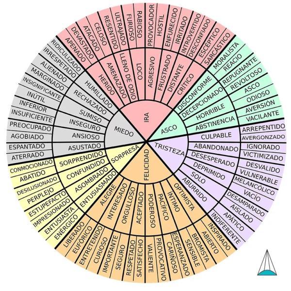 Emoções primárias: quais são, tipos e funções - Círculo de emoções primárias e secundárias