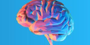 Diferença entre sistema nervoso central e periférico