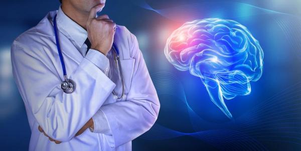 Diferença entre sistema nervoso central e periférico - Sistema Nervoso Central: função e anatomia