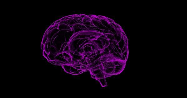 Demência vascular: sintomas, etapas e tratamento