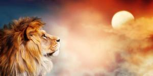 O que significa sonhar com leões