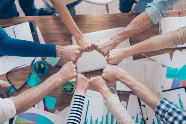 15 tipos de inteligência - Inteligência colaborativa
