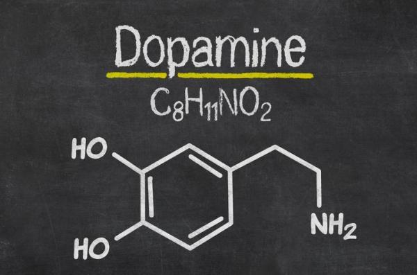 Diferença entre dopamina e serotonina - O que é dopamina